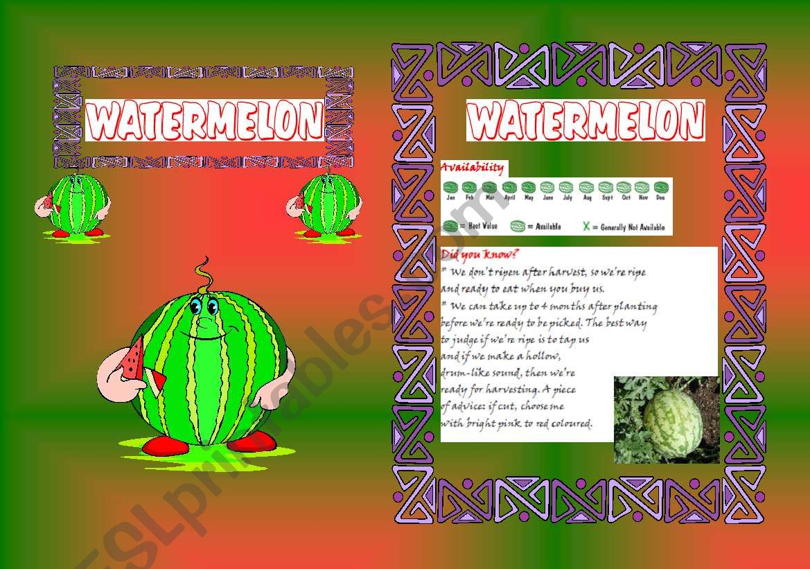 Fruits Booklet 10 B W Included