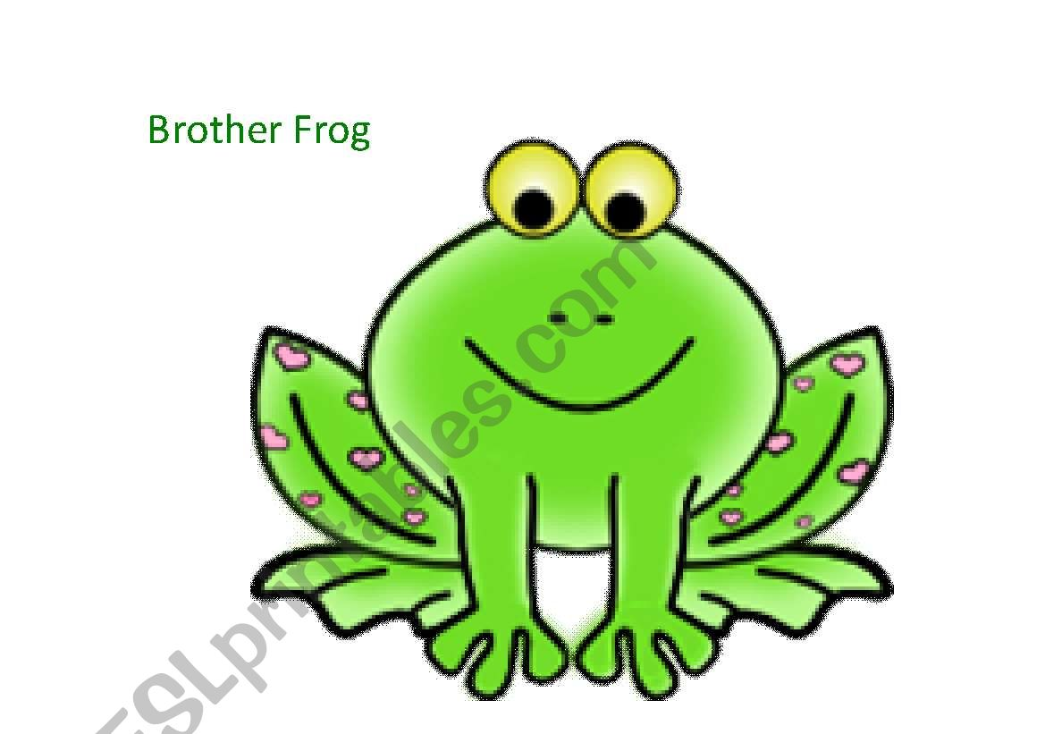 The Frog Family Flashcards Set 2