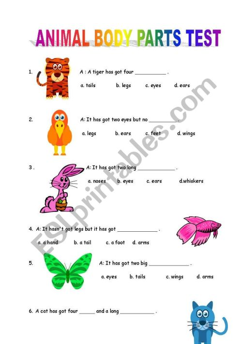 small resolution of Animal Body Parts Test - ESL worksheet by mongo