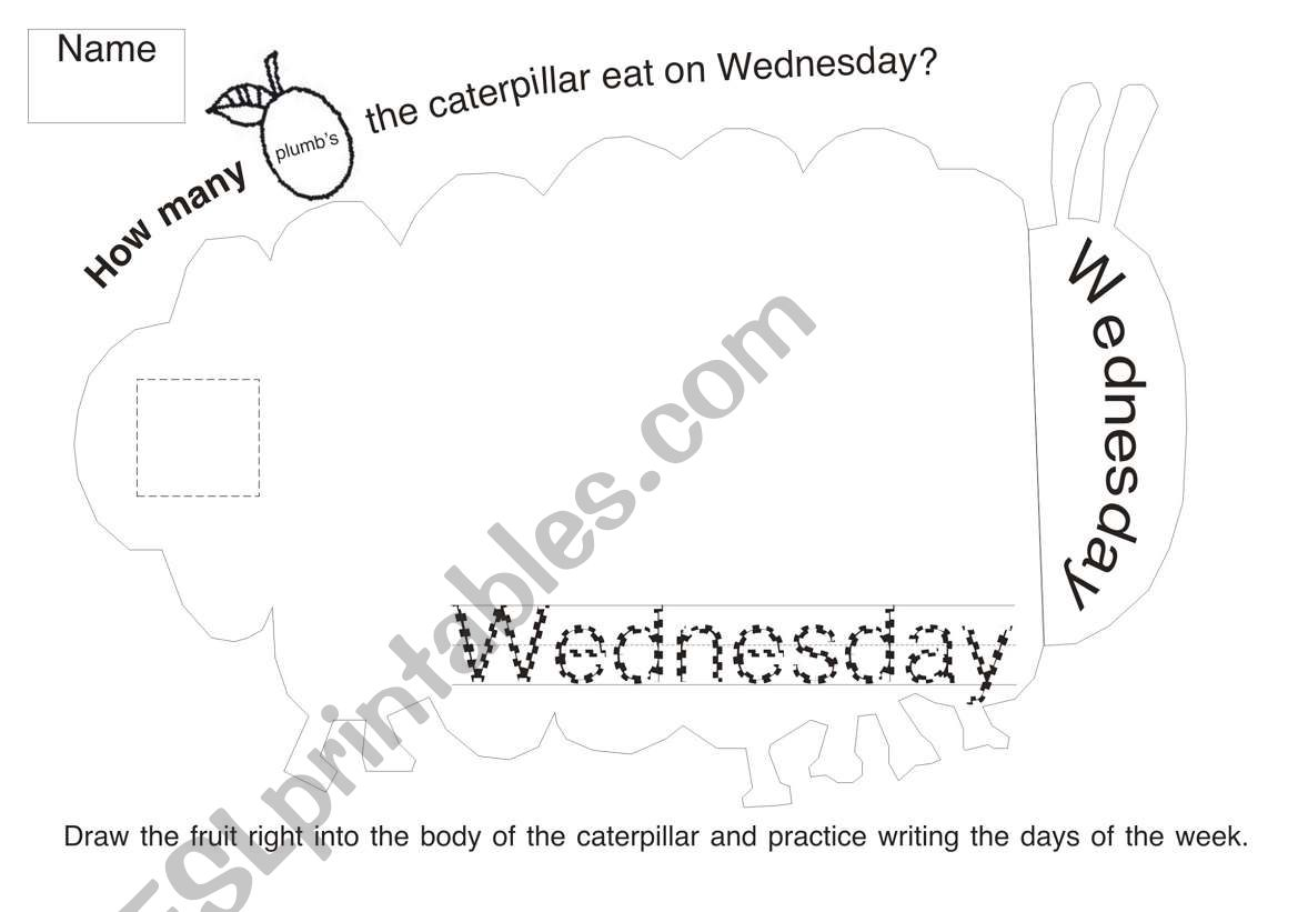 The Very Hungry Caterpillar Worksheet 3