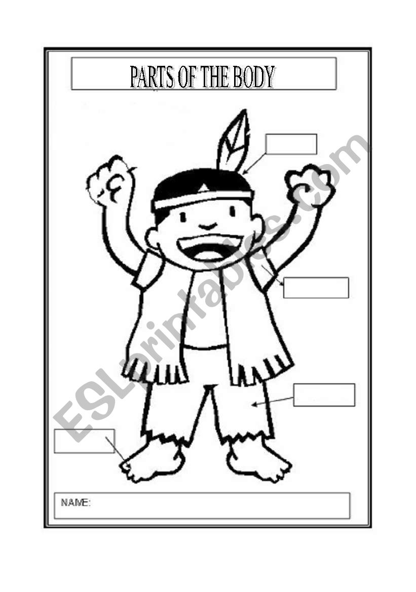 English worksheets: HEAD, SHOULDERS, KNEES AND TOES