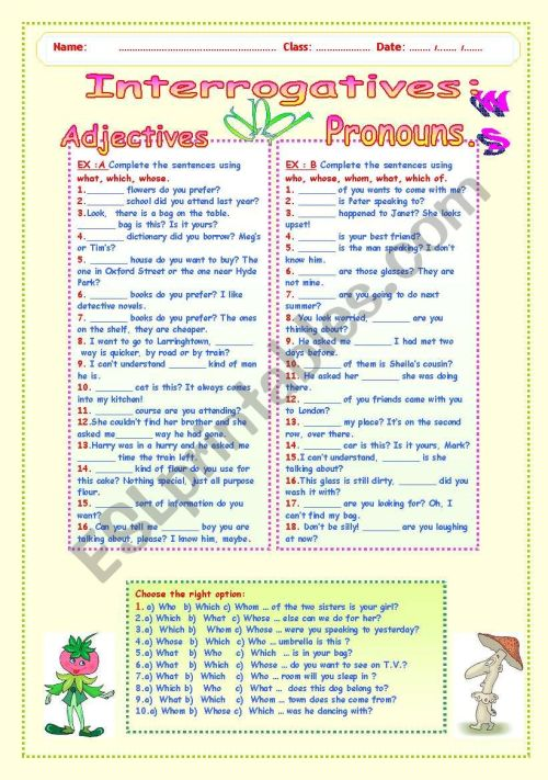 small resolution of INTERROGATIVES : ADJECTIVES AND PRONOUNS. - ESL worksheet by LUCETTA06