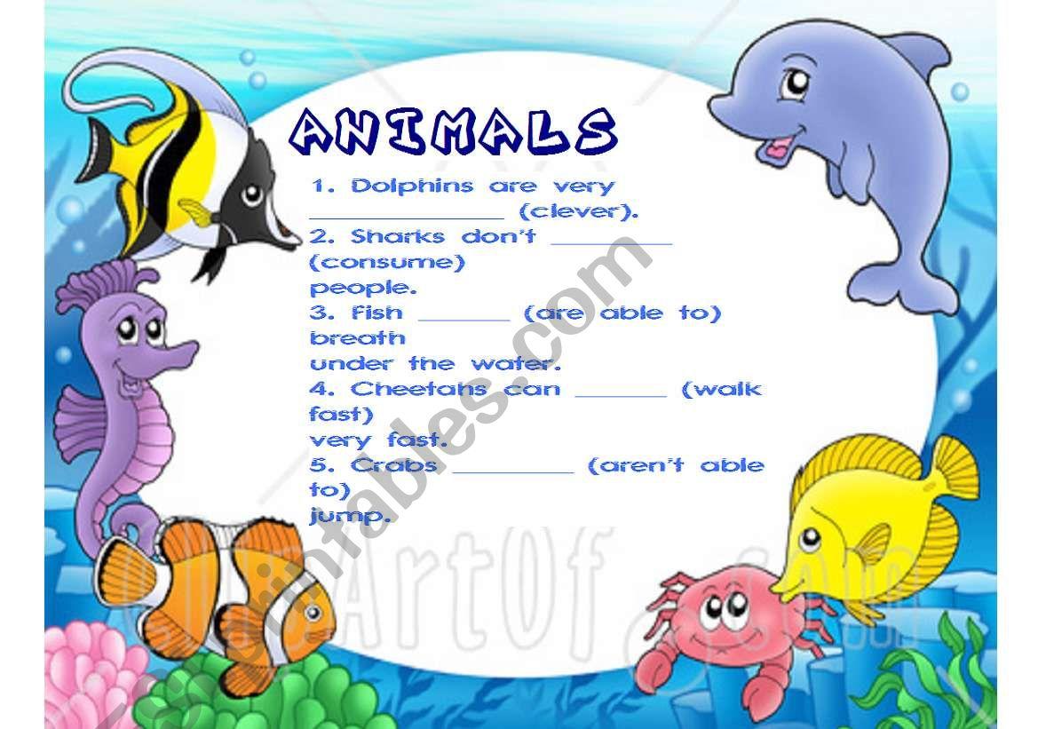 Animals Description