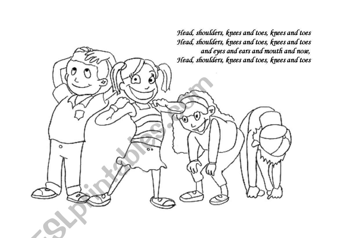 Head Shoulders Knees And Toes Worksheet Pictures To Pin