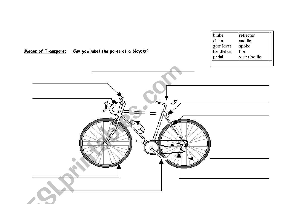 English Worksheets Bike Means Of Transport