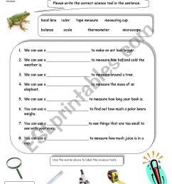 32 Science Tools Worksheet 4th Grade - Worksheet Project List [ 1169 x 821 Pixel ]