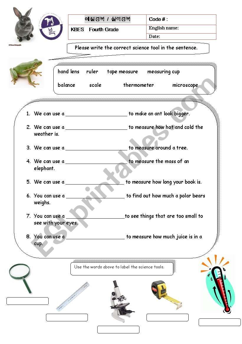 medium resolution of 32 Science Tools Worksheet 4th Grade - Worksheet Project List