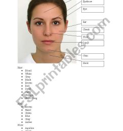 the human face vocabulary worksheet [ 821 x 1169 Pixel ]