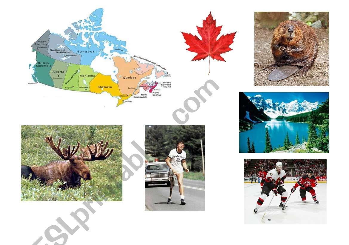 Canada Matching And Making A Poster