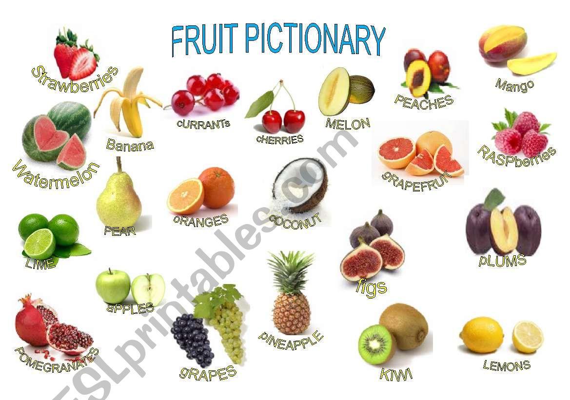 French Fruits Vocabulary Worksheet