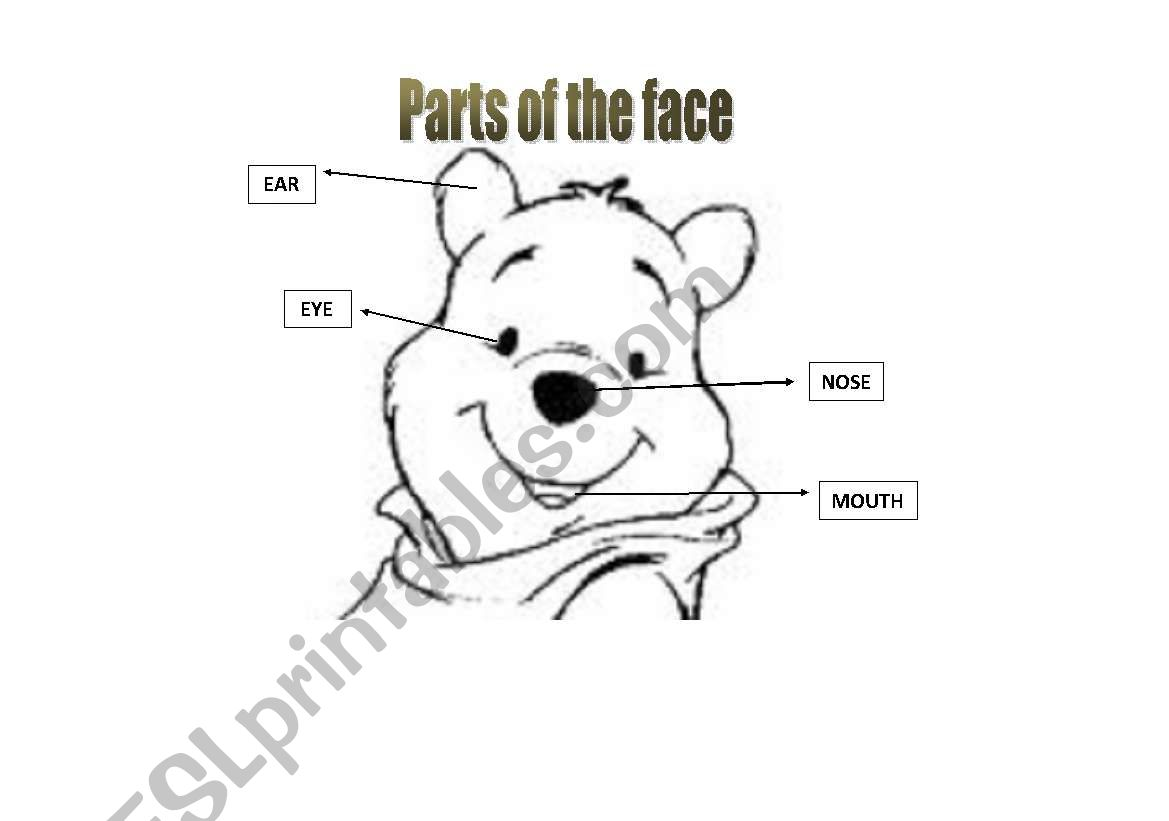 English Worksheets Parts Of The Face