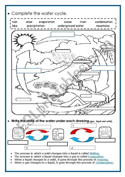 small resolution of 32 Label The Water Cycle Worksheets - Labels Database 2020