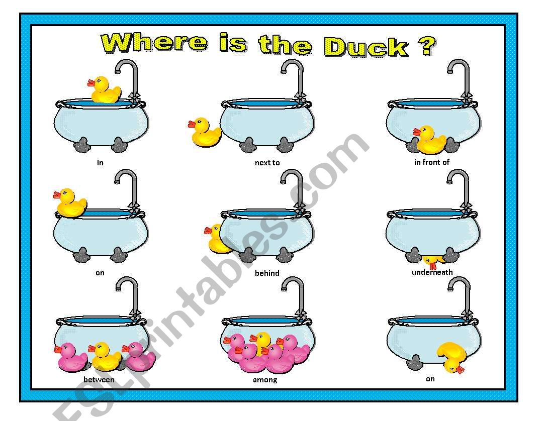 Where Is The Duck Preposition Matching Cards Part 2 Of 2