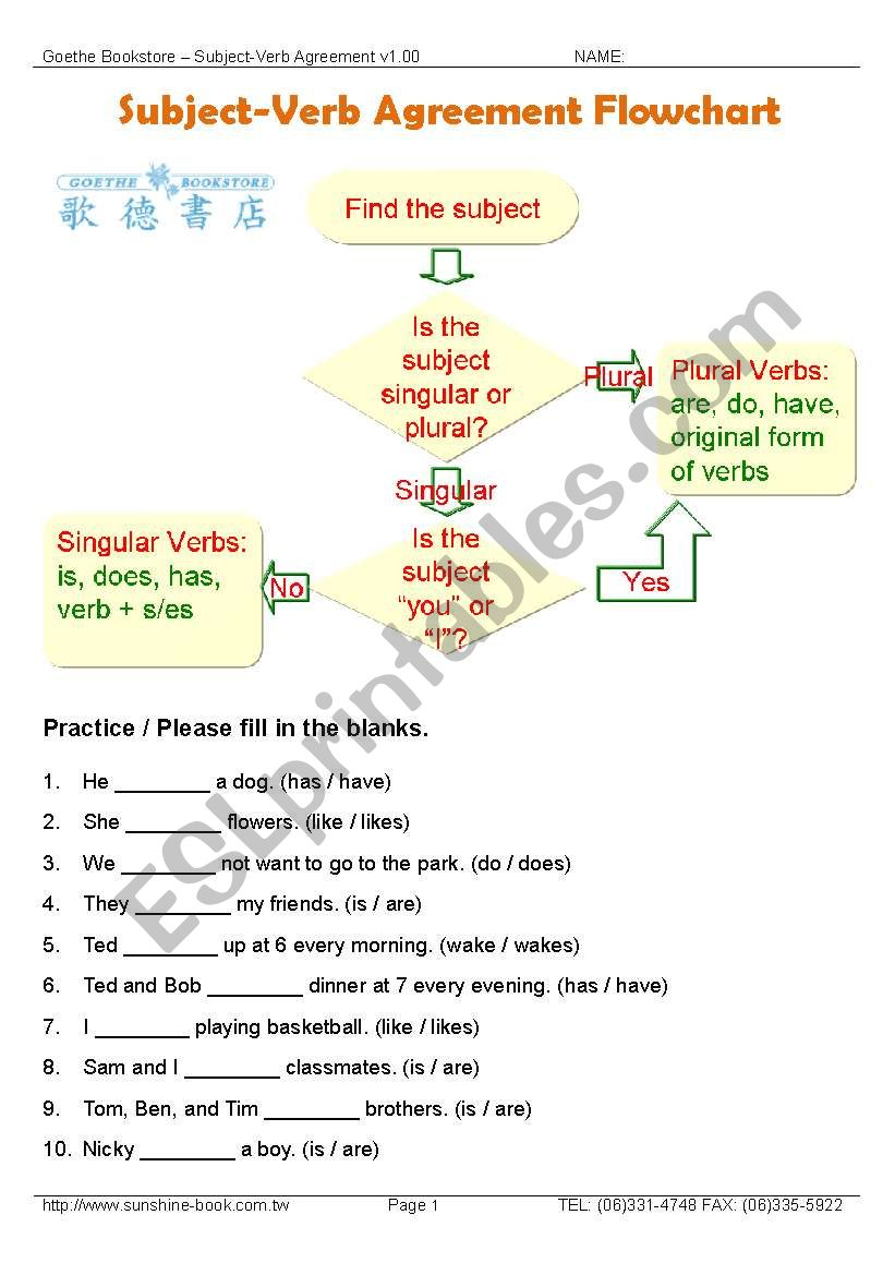 hight resolution of Grammar / Subject-Verb Agreement Flowchart with Exercises - ESL worksheet  by mmpr