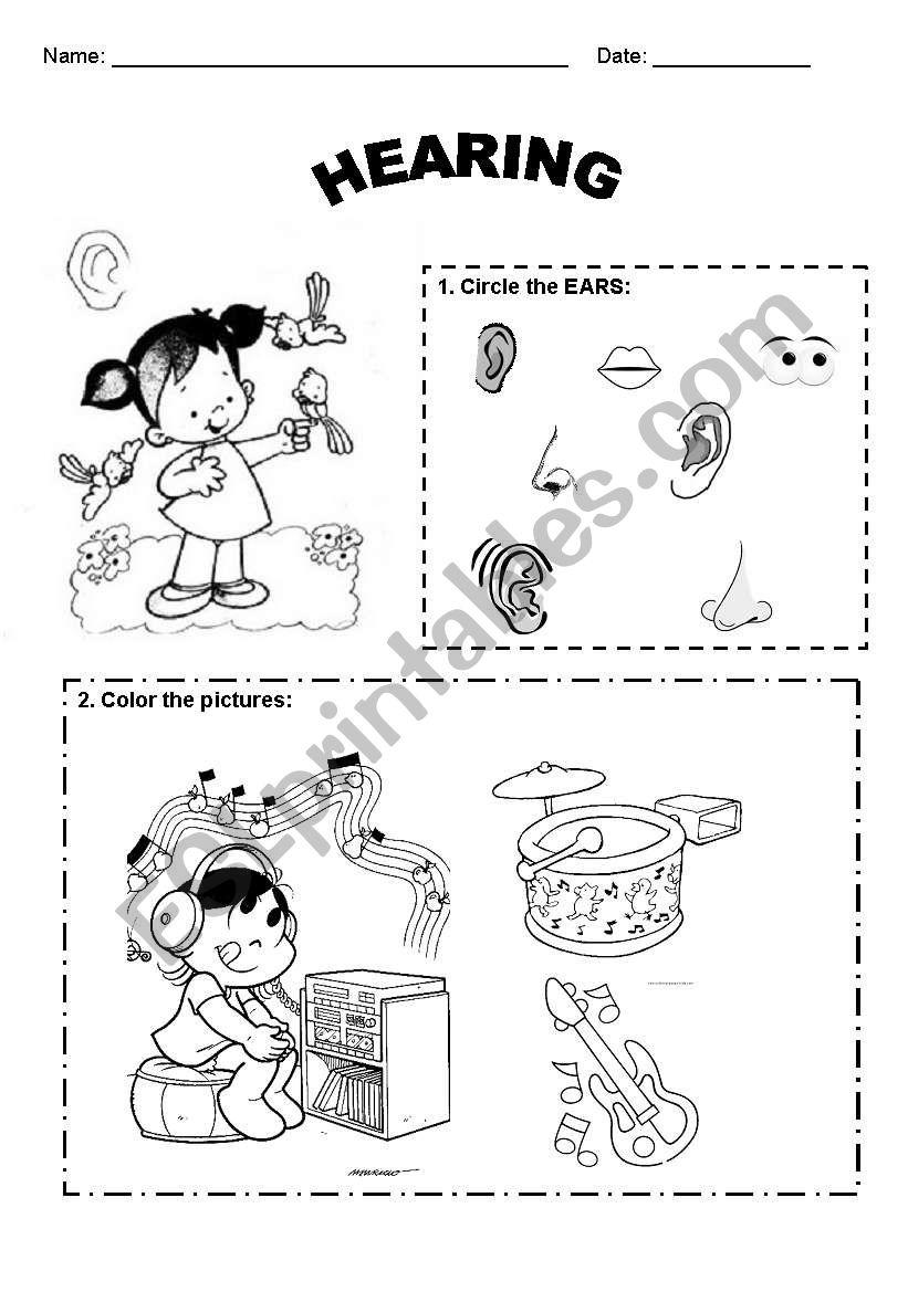 English worksheets: Hearing