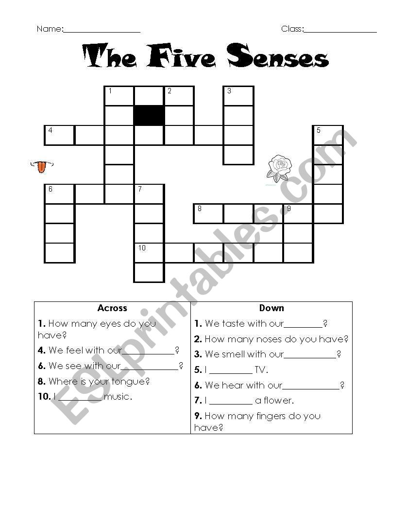 hight resolution of The Five Senses crossword - ESL worksheet by samuy