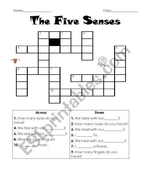 small resolution of The Five Senses crossword - ESL worksheet by samuy