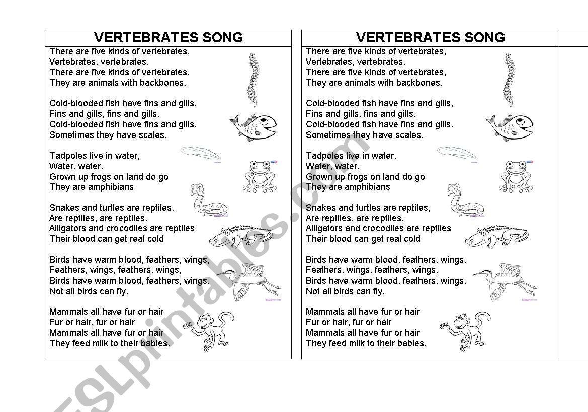 English Worksheets Vertebrates Song