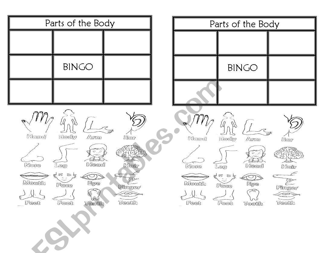 Body Parts Bingo
