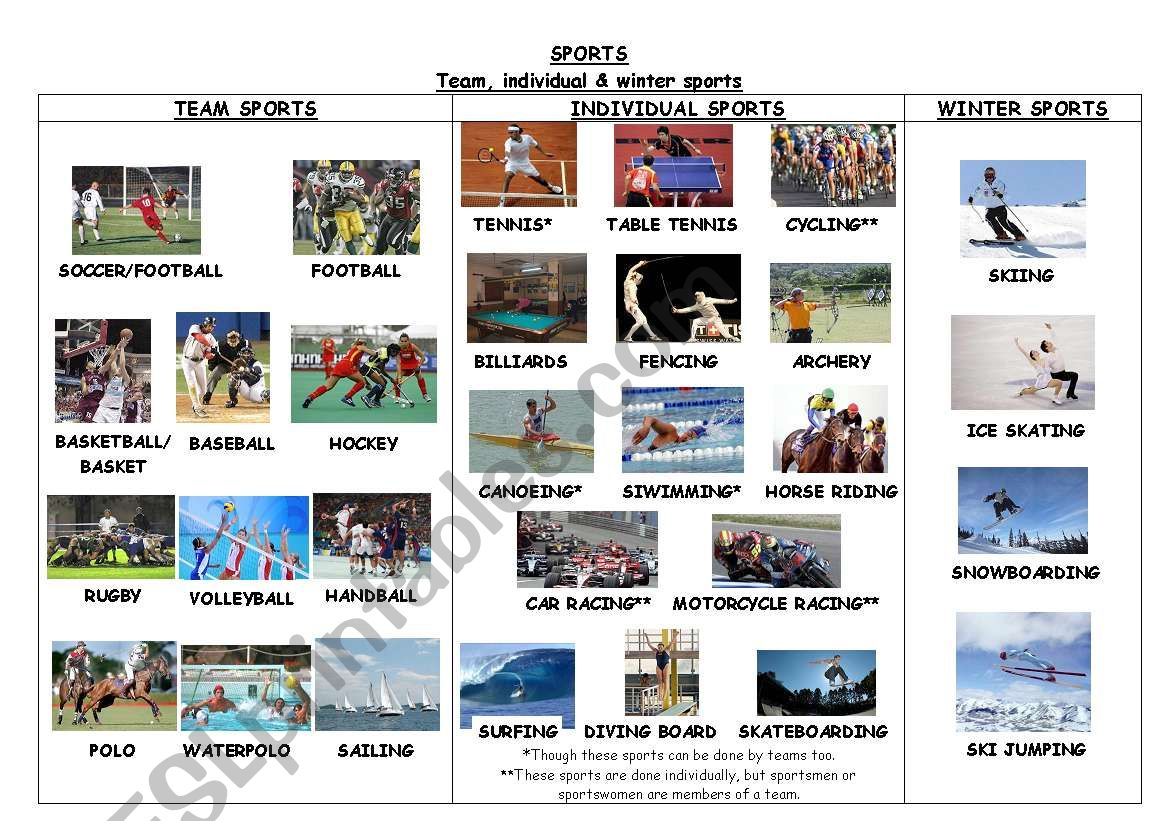 Sports Team Individual Amp Winter Sports