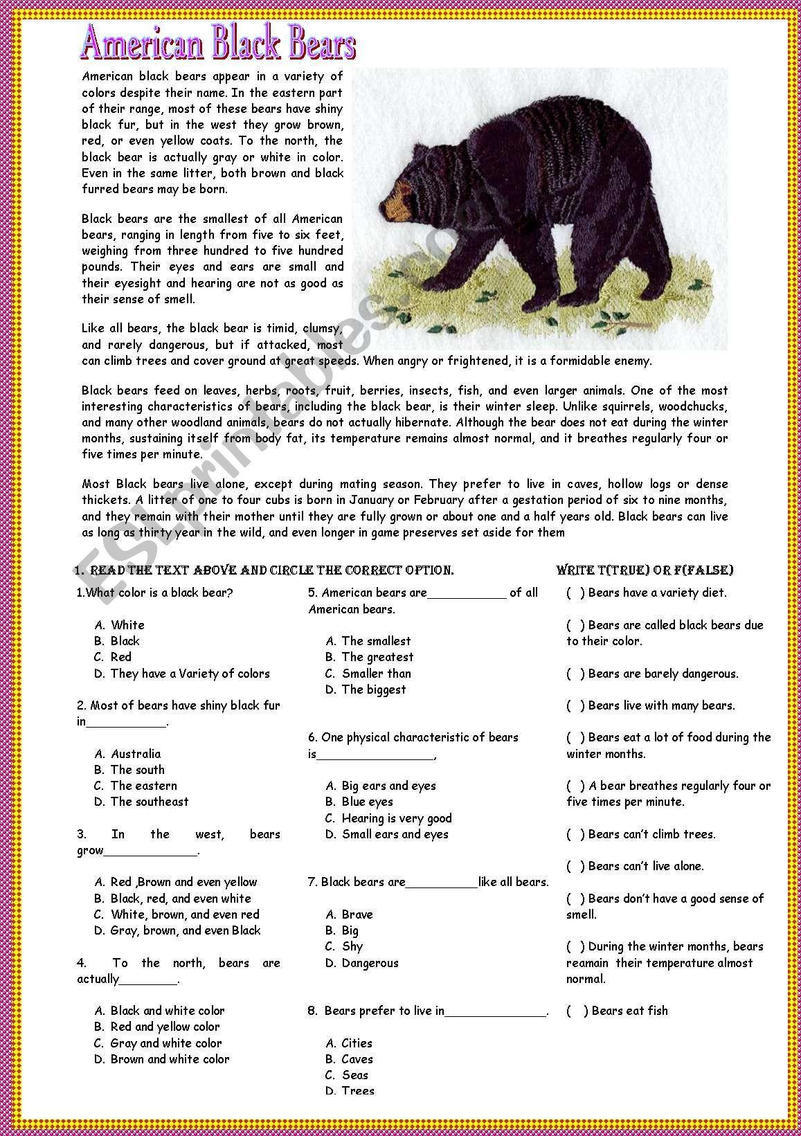 Reading American Black Bears