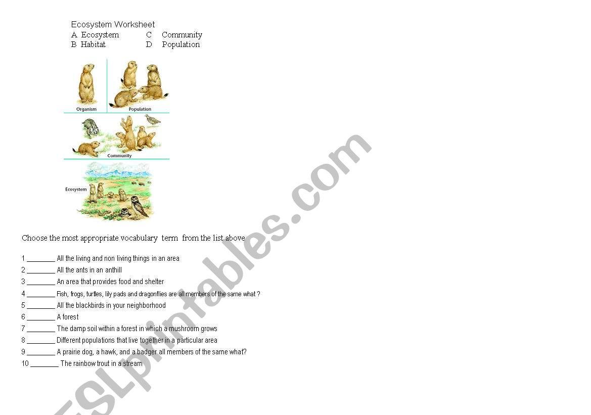 English Worksheets Ecosystem