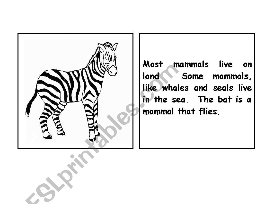 English worksheets: Zebra parts of the body booklet
