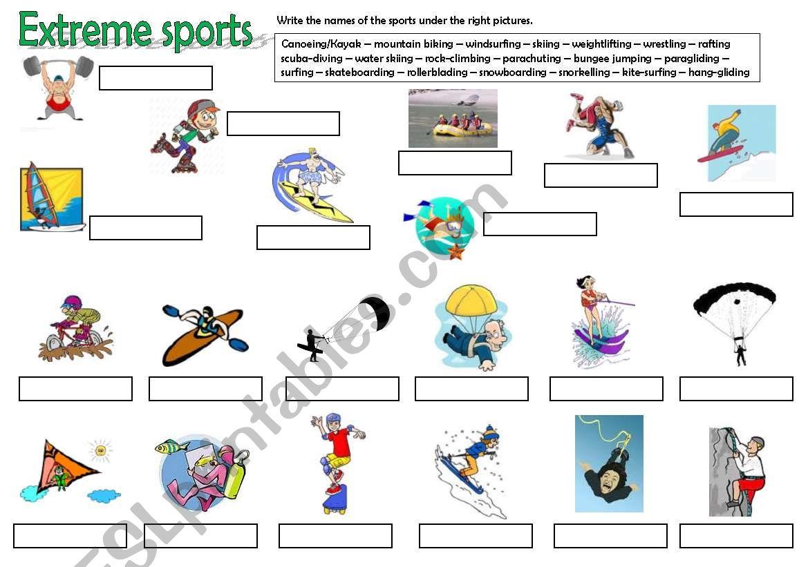 Sports Part 2