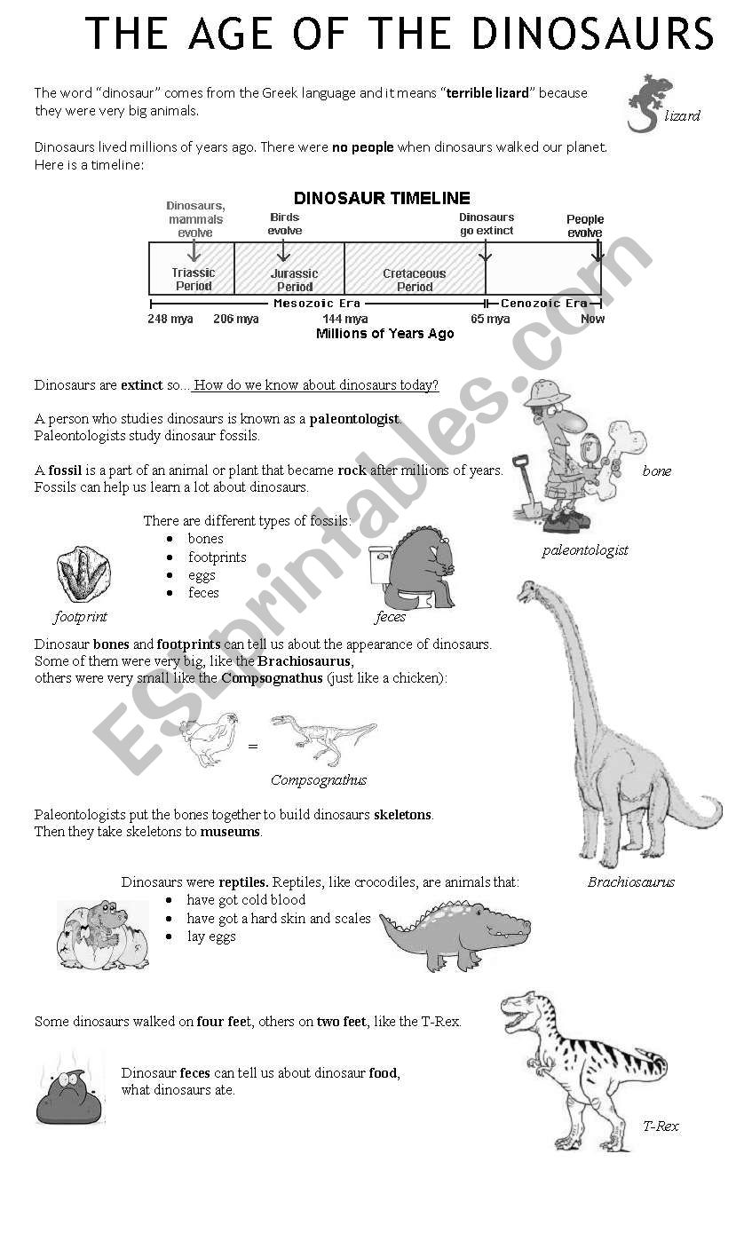 medium resolution of The Age of the Dinosaurs - ESL worksheet by angiemd