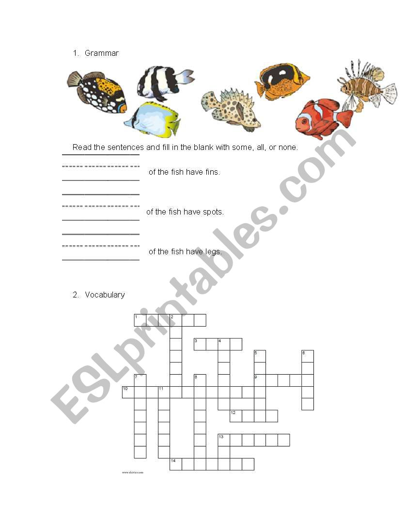 English worksheets: placement test