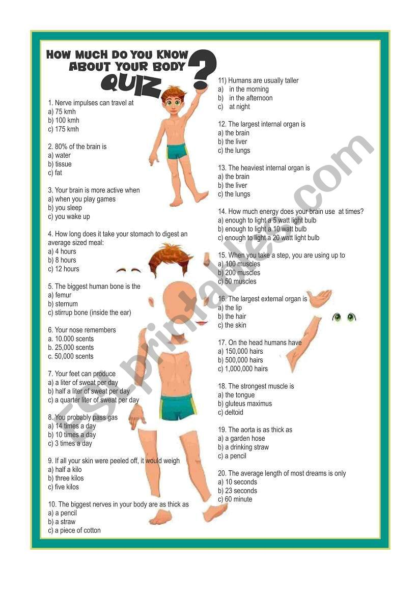 How Much Do You Know About Your Body? - ESL worksheet by ...