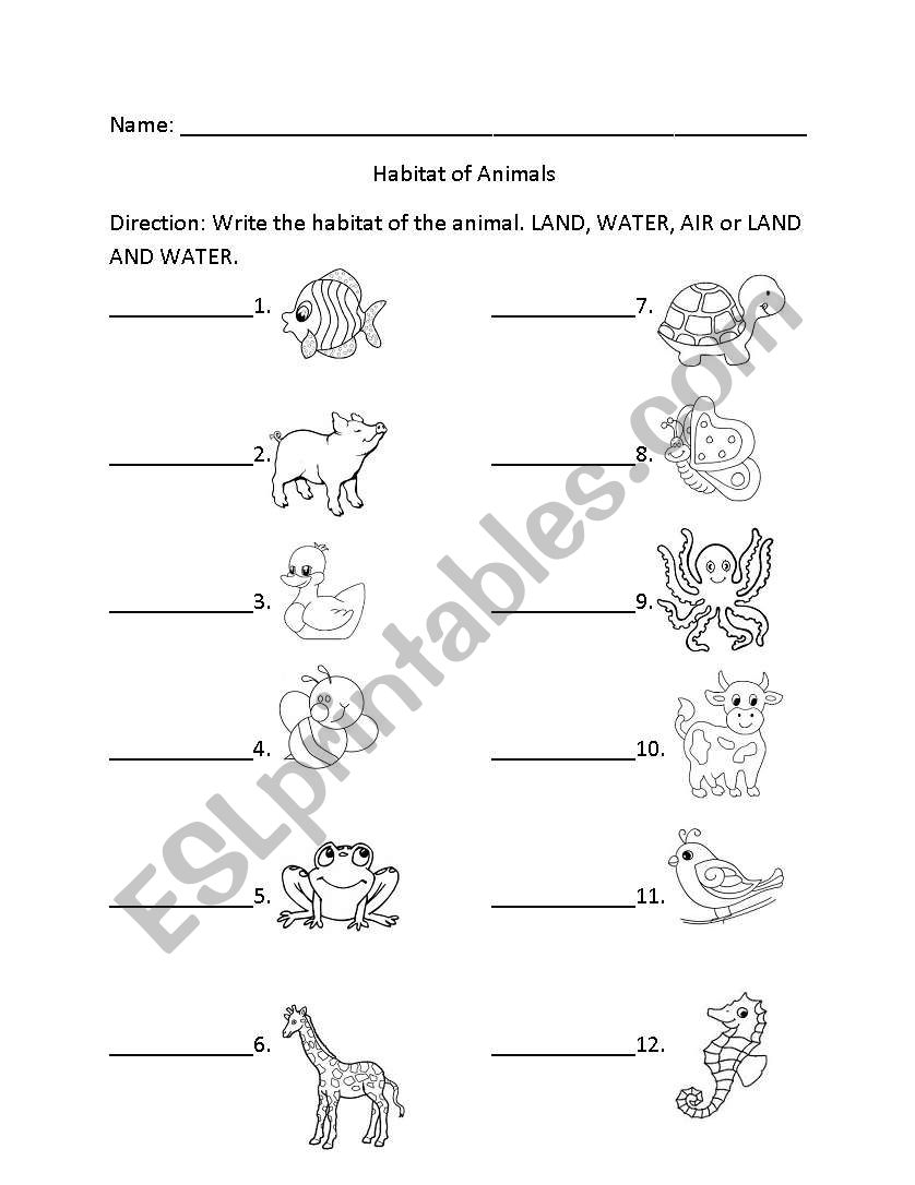 Animals And Their Habitat Worksheets For Kindergarten