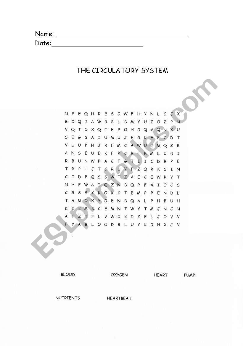 English worksheets: The Circulatory System Wordsearch