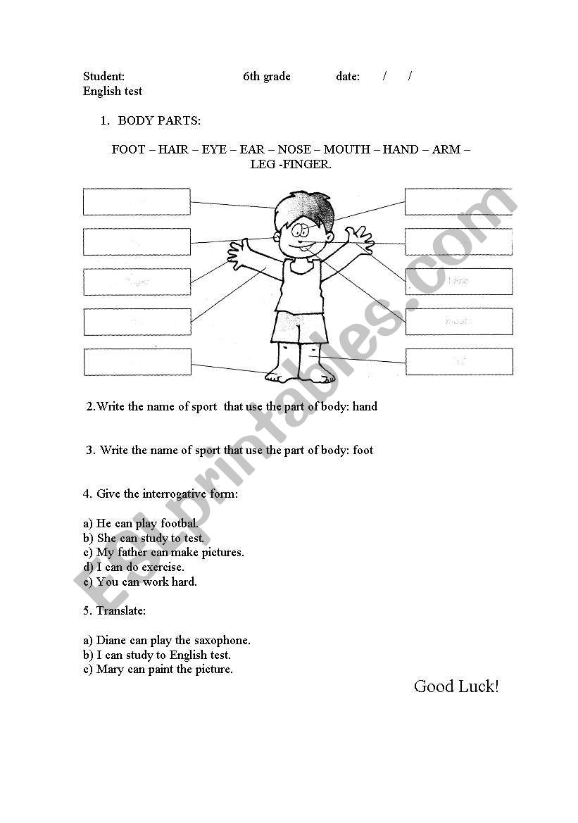 hight resolution of English worksheets: Body Parts