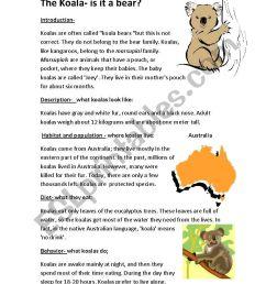 the koala-is it a bear - ESL worksheet by semmy [ 1169 x 821 Pixel ]
