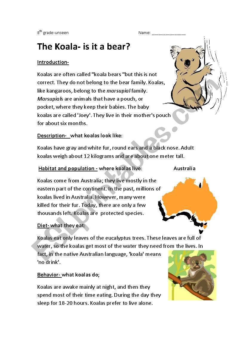 medium resolution of the koala-is it a bear - ESL worksheet by semmy