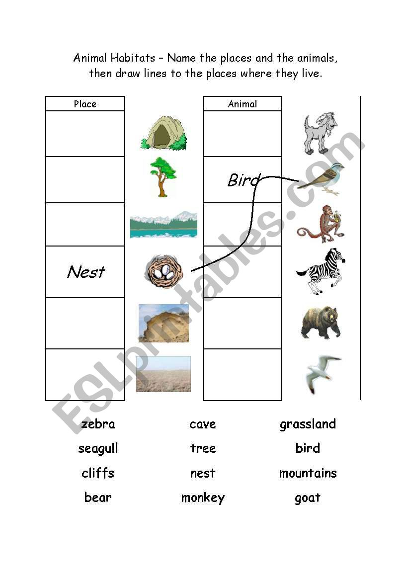 English worksheets: Animal Habitats 1