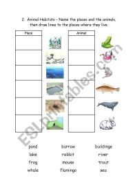 English worksheets: Animal Habitats 2