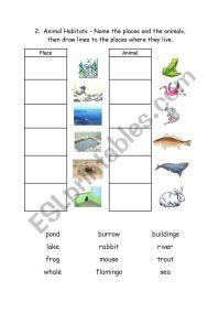 English worksheets: Animal Habitats 2