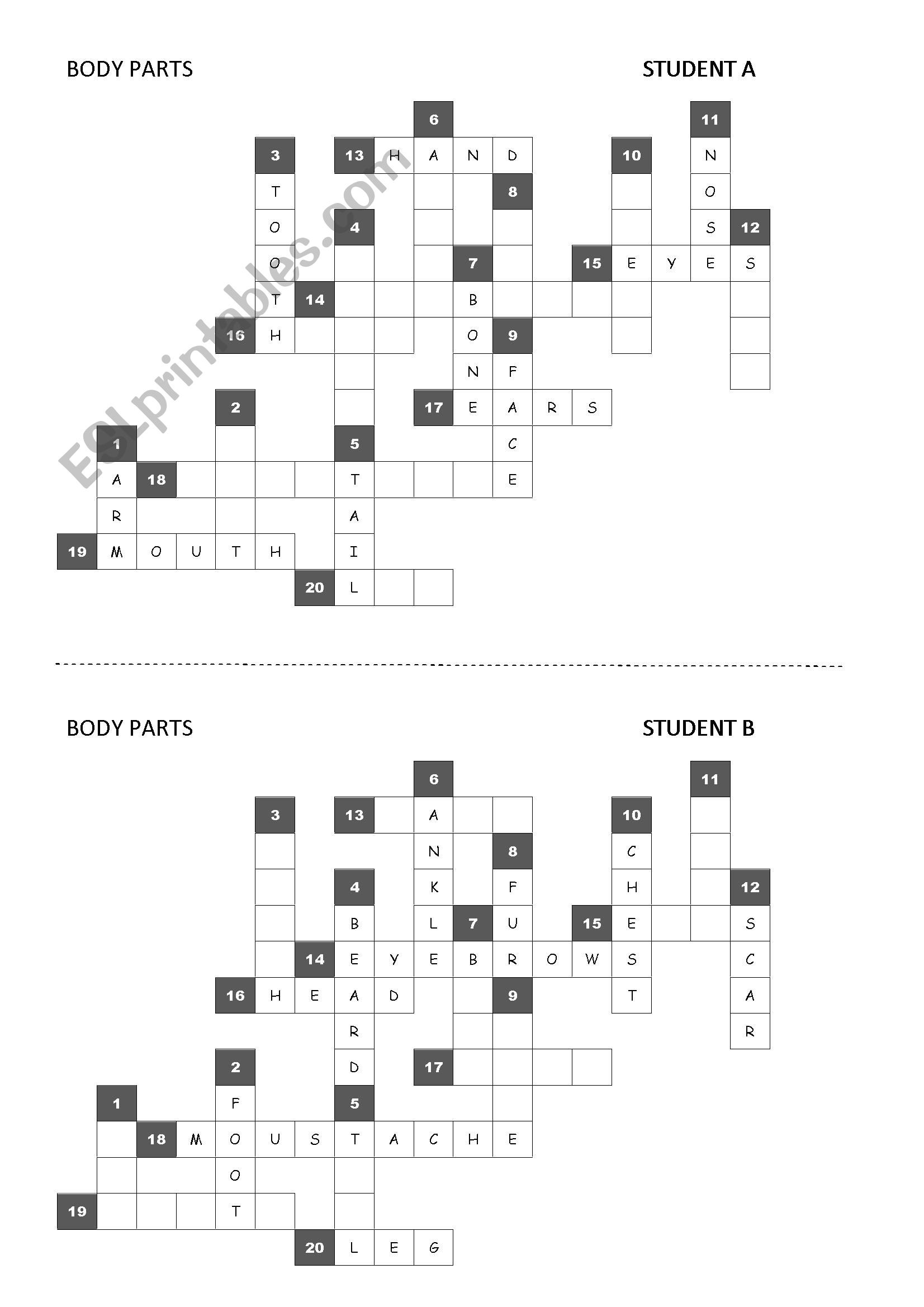 Body Parts Gt Pair Work Crossword