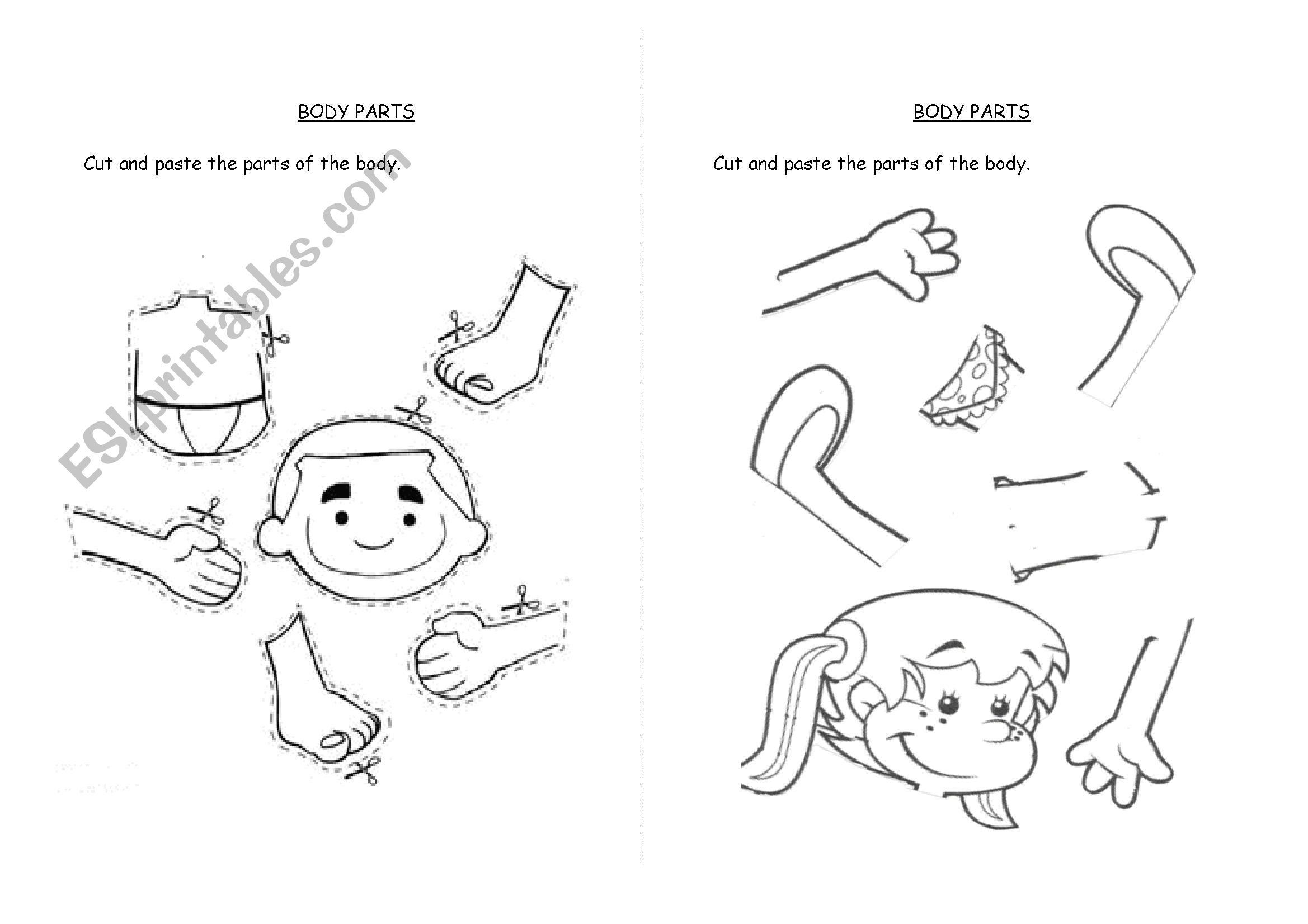 Printable Worksheet Body Parts Face