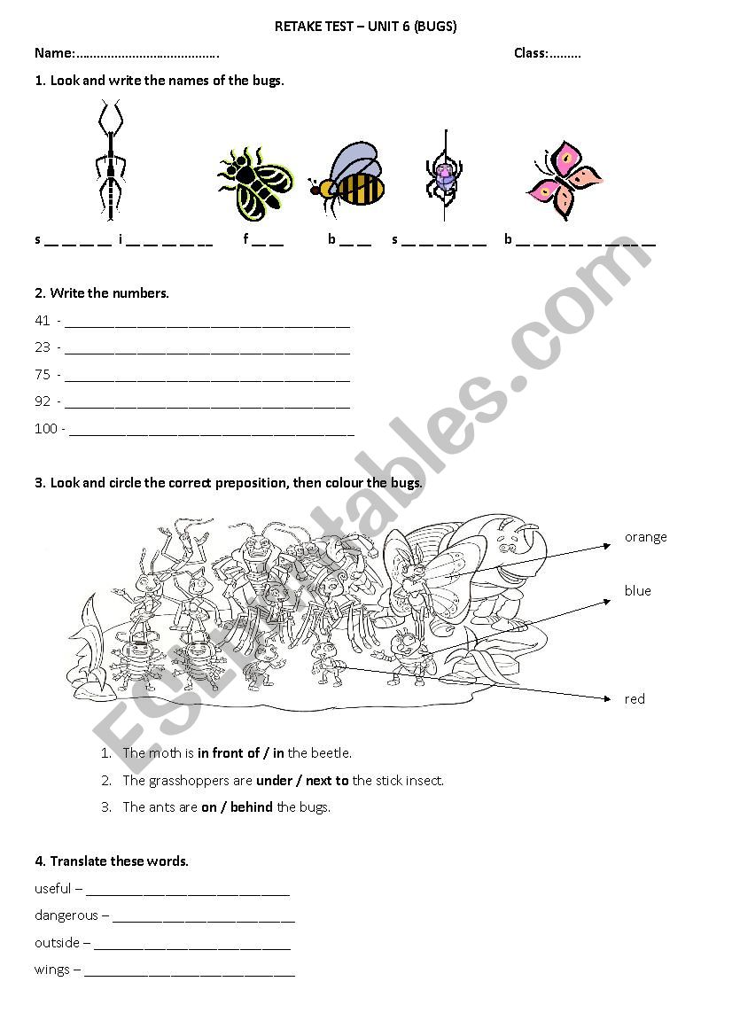 English worksheets: English Adventure 3 Bugs Ttest