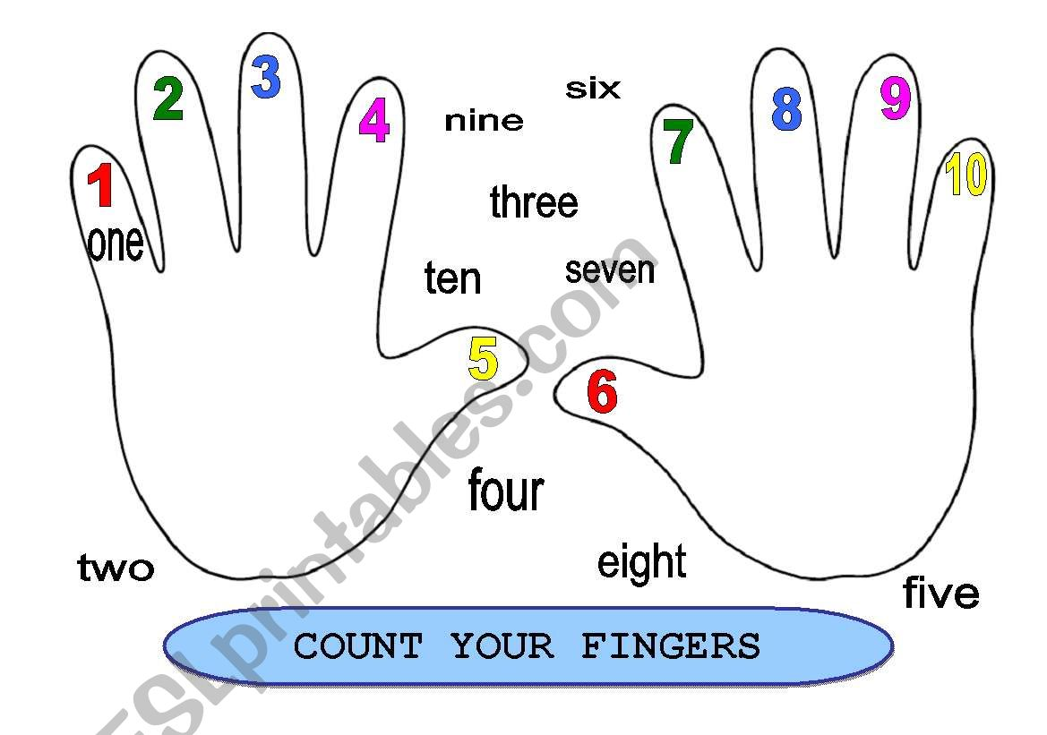 Count Your Fingers