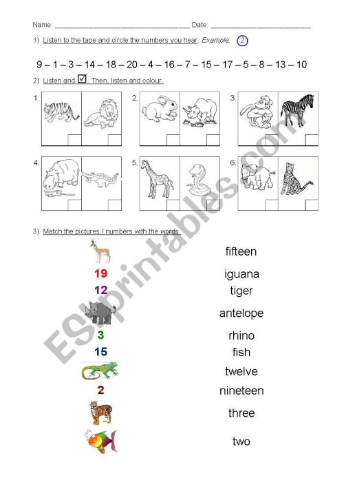 small resolution of 2nd grade Test - numbers 1 to 20 \u0026 animals - ESL worksheet by silvigit