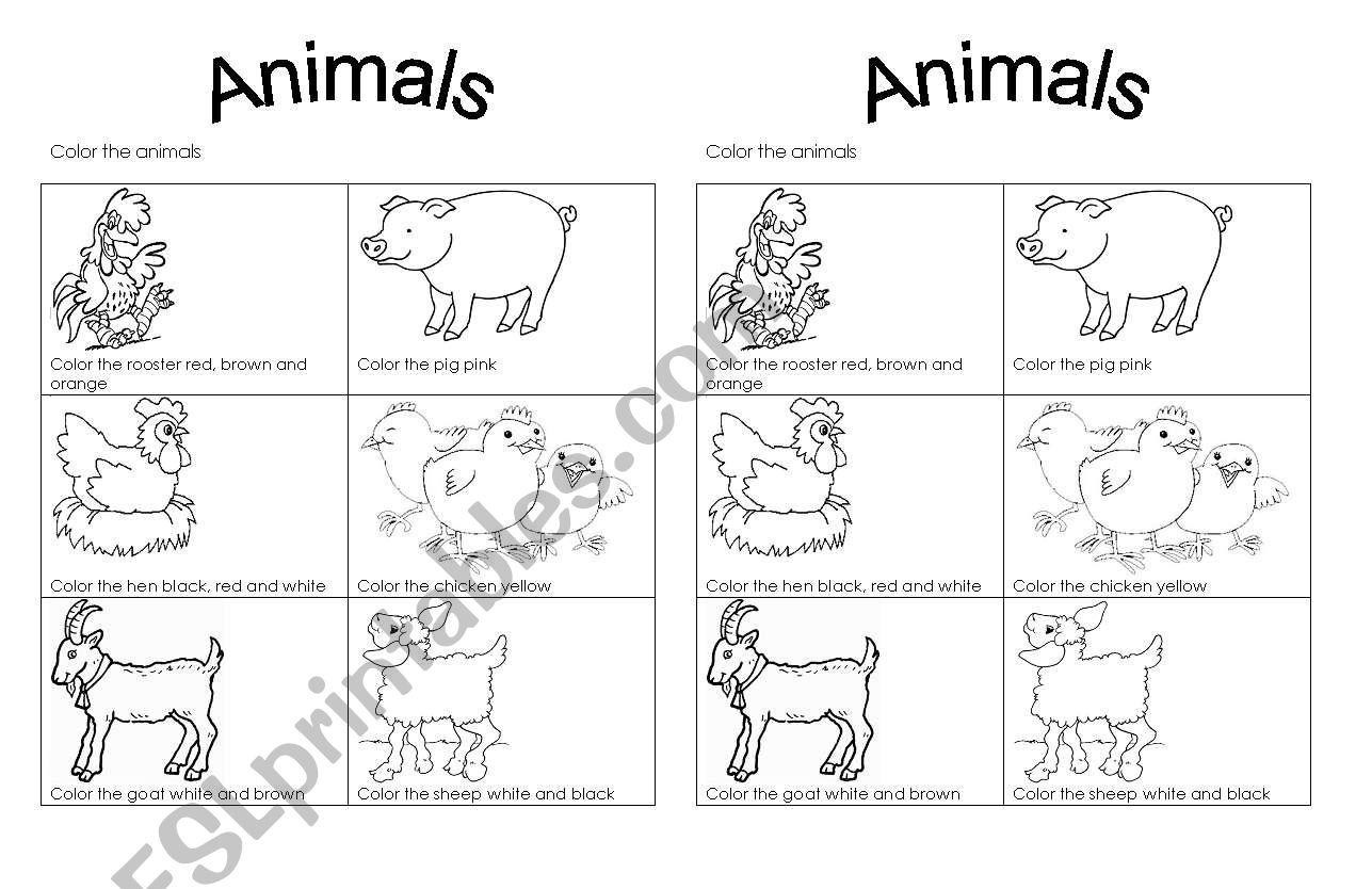 Color Farm Animals