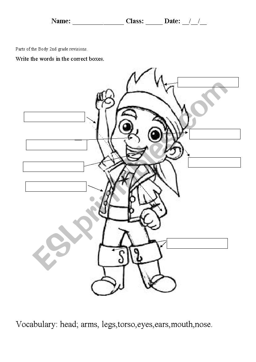 medium resolution of parts of the body - ESL worksheet by lioness30