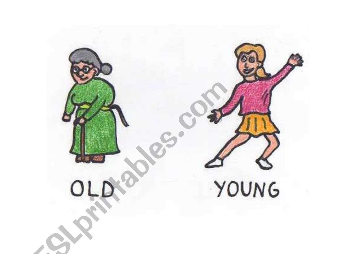 English Worksheets Opposites Old