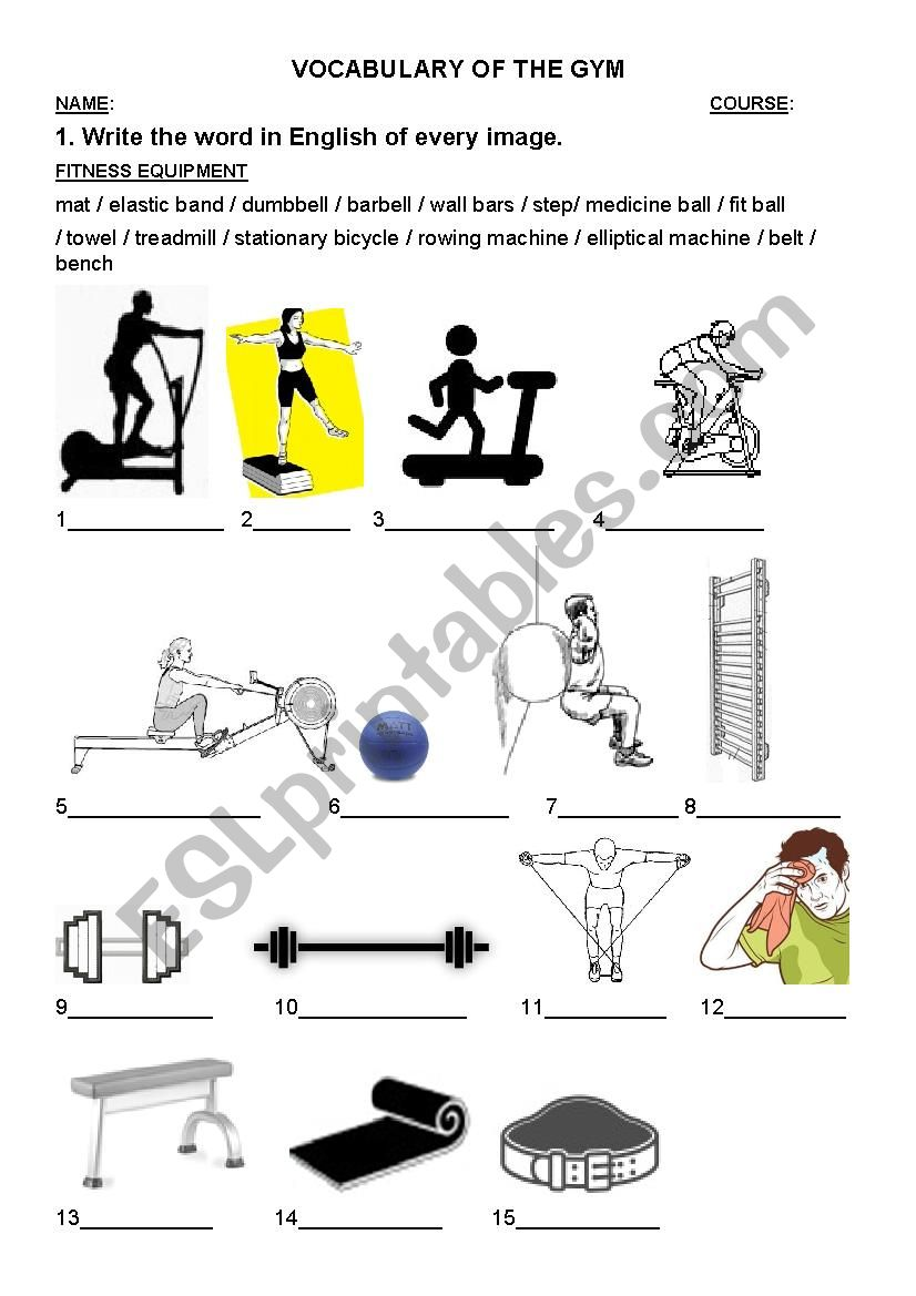 English worksheets: Vocabulary of the gym (Fitness equipment)
