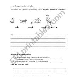 Ecosystems test 4th grade - ESL worksheet by Almuxx [ 1169 x 826 Pixel ]