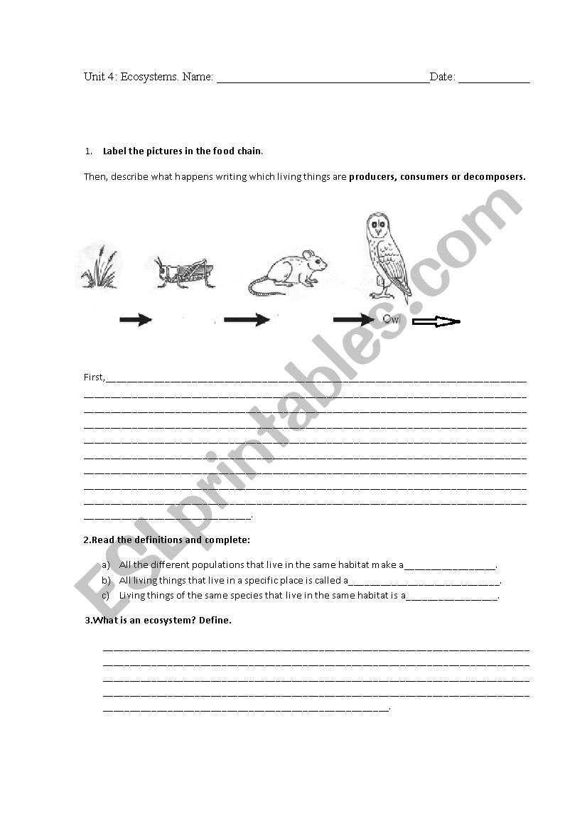 hight resolution of Ecosystems test 4th grade - ESL worksheet by Almuxx